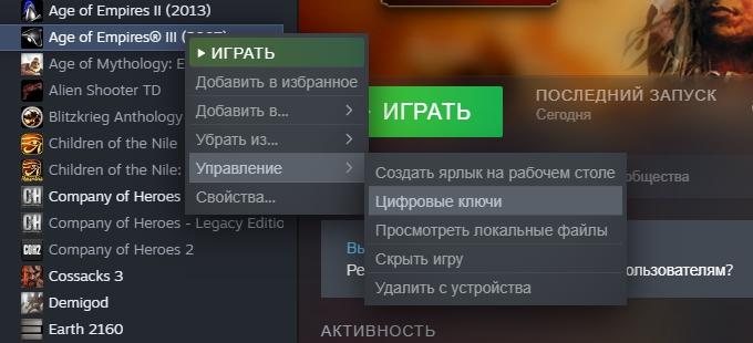 Открываем цифровые ключи в Steam